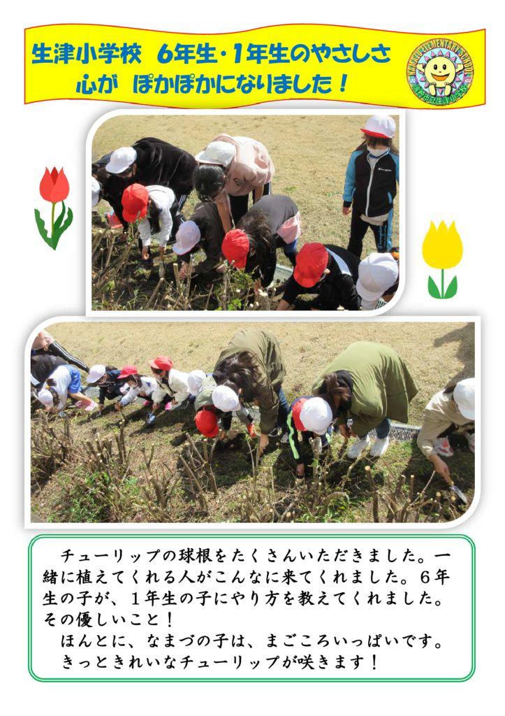 0125チューリップ植え1・6年生のサムネイル
